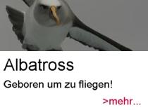albatross link
