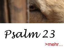 Psalm 23 link Kopie